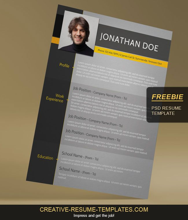 free design modern cv templates - Free Contemporary Resume Templates