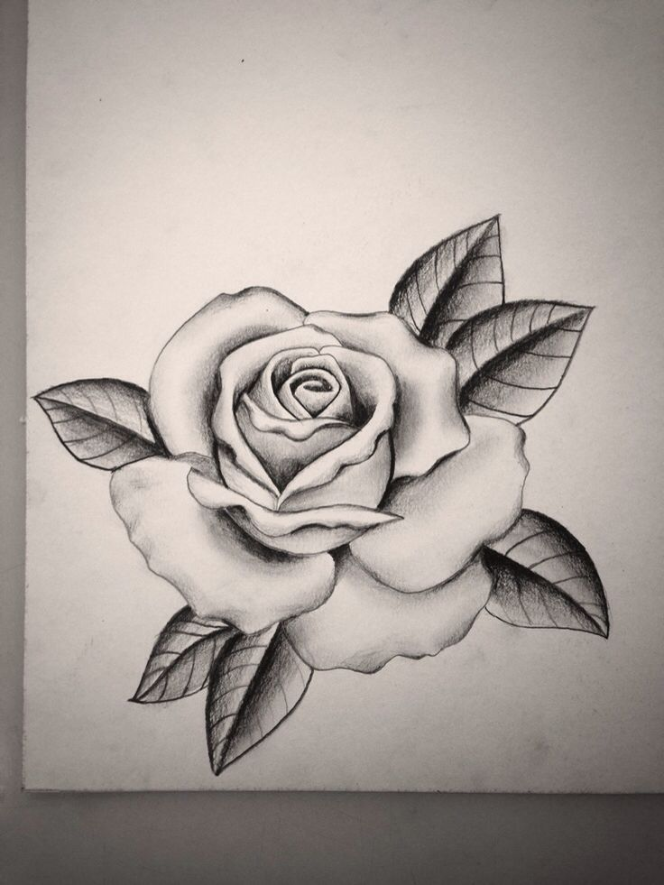 Tatoo art rose rose tattoo design by alyx wilson society6 rose ccuart Images