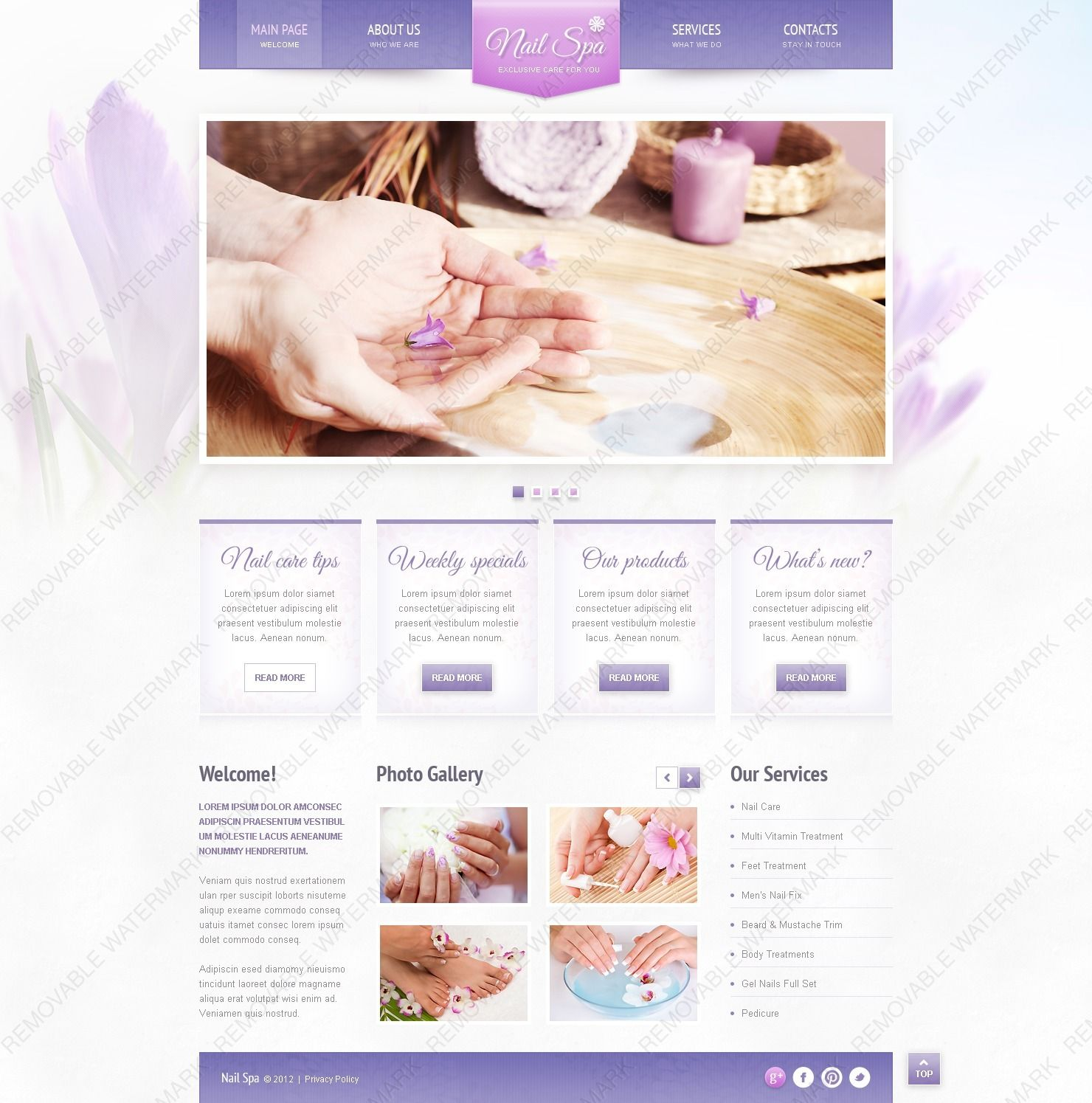 Website Design: fresh gallery colors different ways styles new additional discount company quality visitors