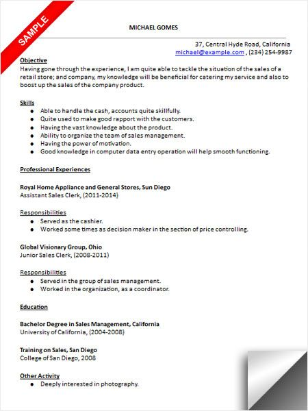 Sales Clerk Resume Sample Resume Resume Examples Clerks