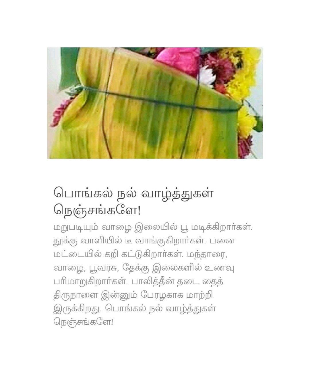Pin by Vasu, Chittoor on Tamil, Vasu, Chittoor Asparagus