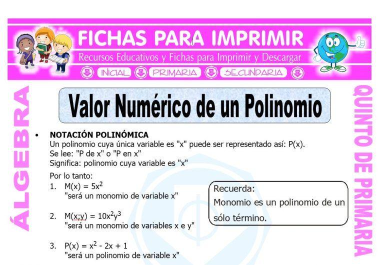 Valor Numerico De Un Polinomio Para Quinto De Primaria Numerico Fichas área De Matemáticas