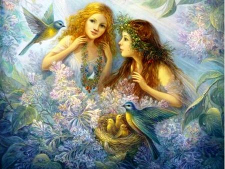 The angelic fairies and the nest - Fantasy & Abstract Background ...
