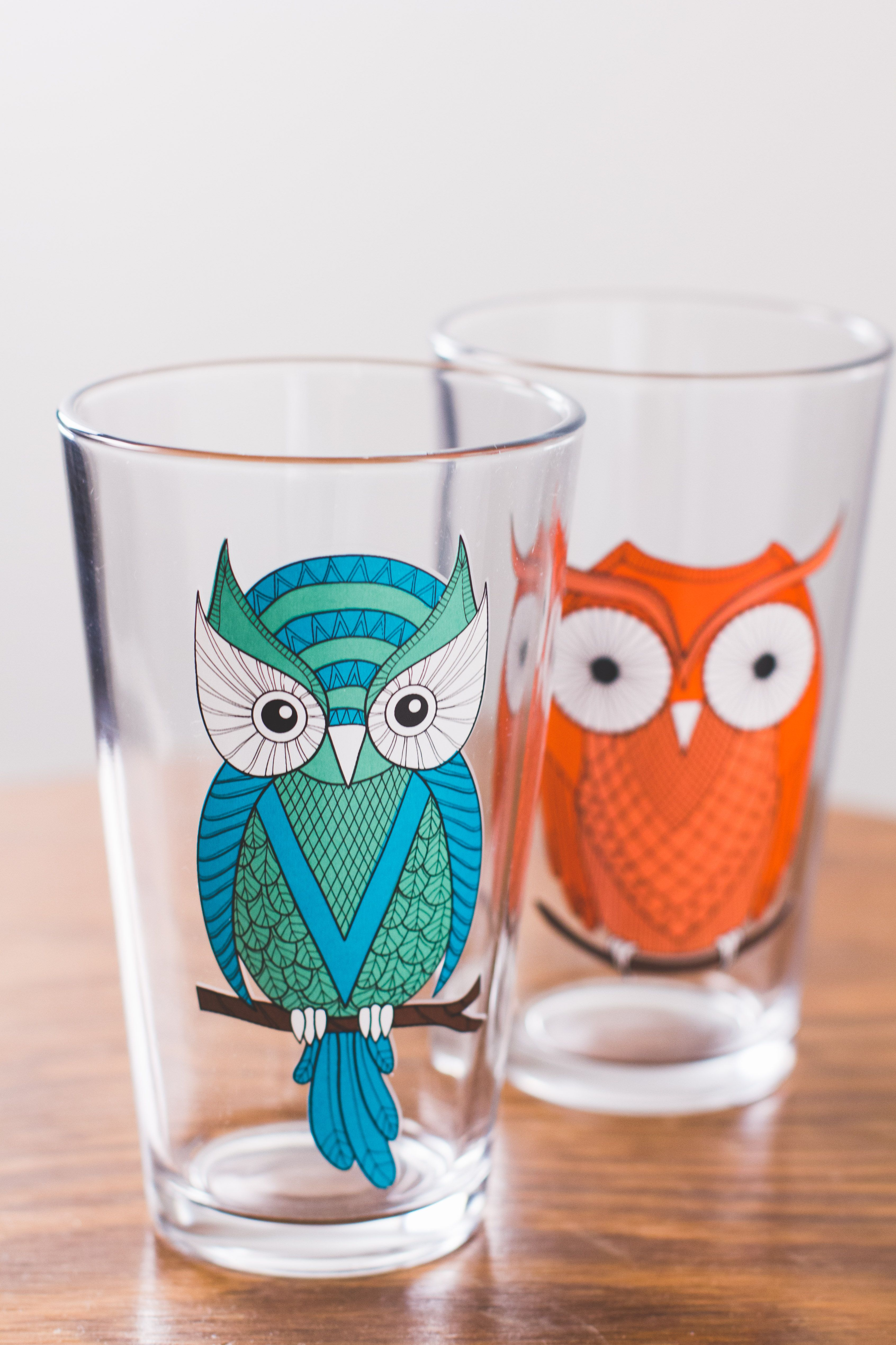 HOO doesn\'t love these retro owl pint glasses? #Owl #Retro #Cheers ...