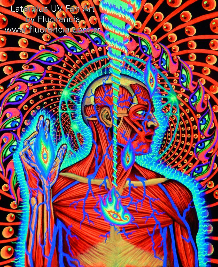 Lateralus Tool Uv Fan Art By Fluorencia On Deviantart Tool Band Artwork Artwork Art
