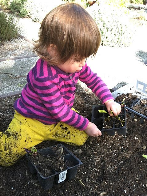zella said purple: for the love of dirt  Fantastic post all parents should read from @Jeanne Zuech @zellasaidpurple