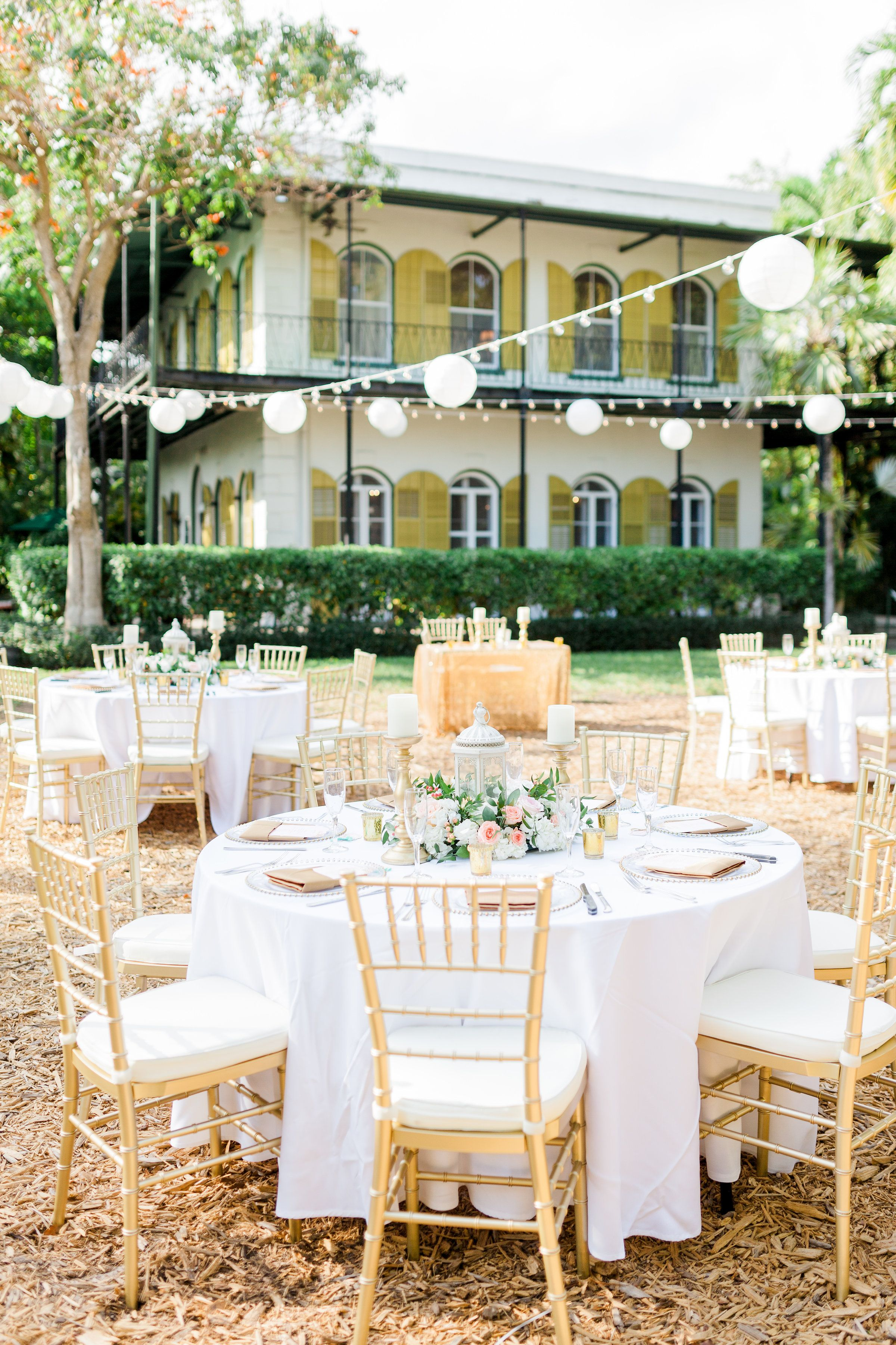 Key West Hemingway House Wedding Reception Wedding