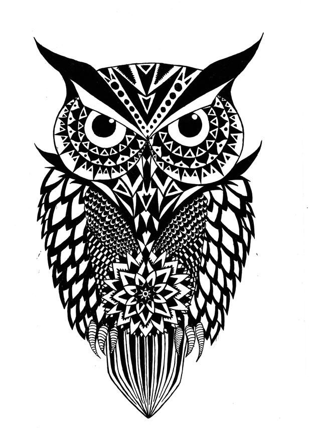 Pin By Joshua Block On Owls Pinterest Owl And Artist