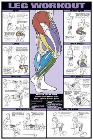 #Chart #Corp #fitness #Fitnus #Instructional #kettlebell ganzkörpertraining #leg #Poster #Profession...