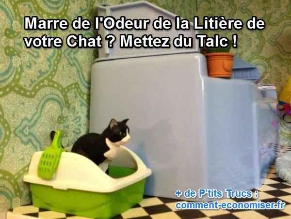marre de l 39 odeur de la liti re de votre chat mettez du talc astuces pour chiens chats. Black Bedroom Furniture Sets. Home Design Ideas