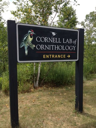 Cornell Lab of Ornithology in Ithaca, NY