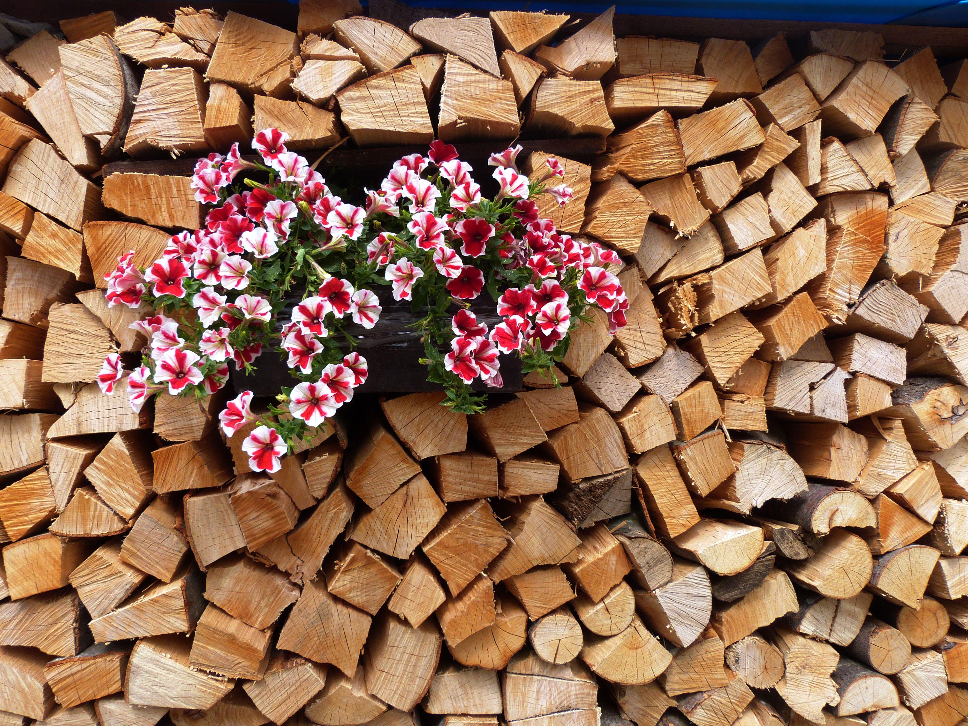Trentino Alto Adige Artigianato pin su legno