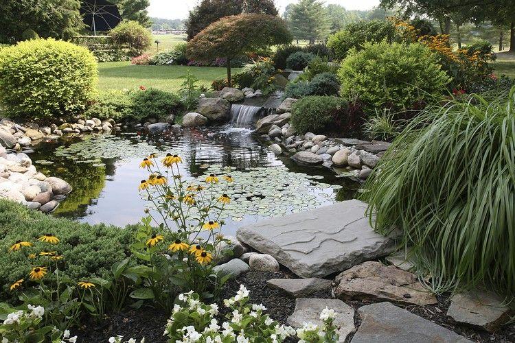 Gartenteich mit Wasserfall und üppiger Uferbepflanzung Ein Teich ...