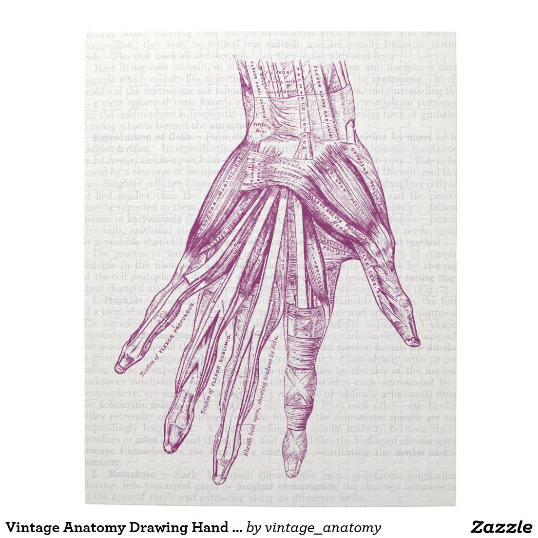 Vintage Anatomy Drawing Hand Muscles Purple Jigsaw Puzzle | Things I ...