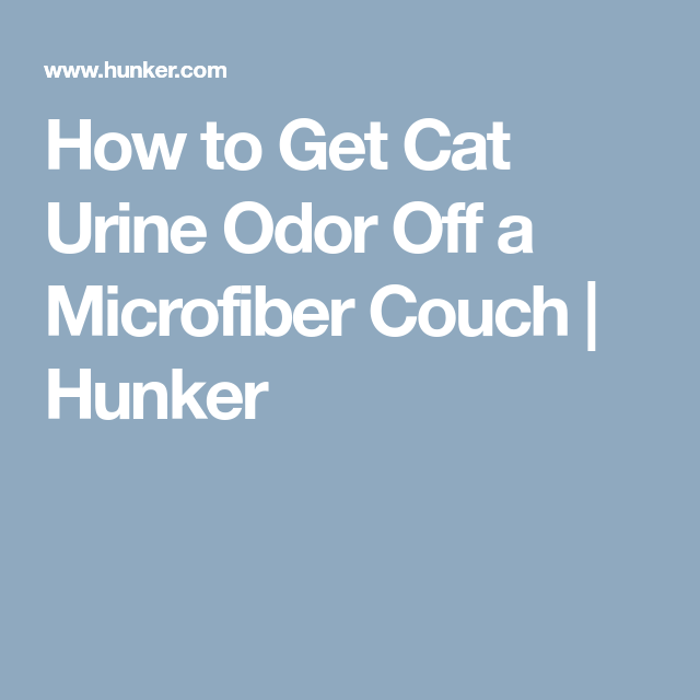 How To Get Cat Urine Odor Off A Microfiber Couch