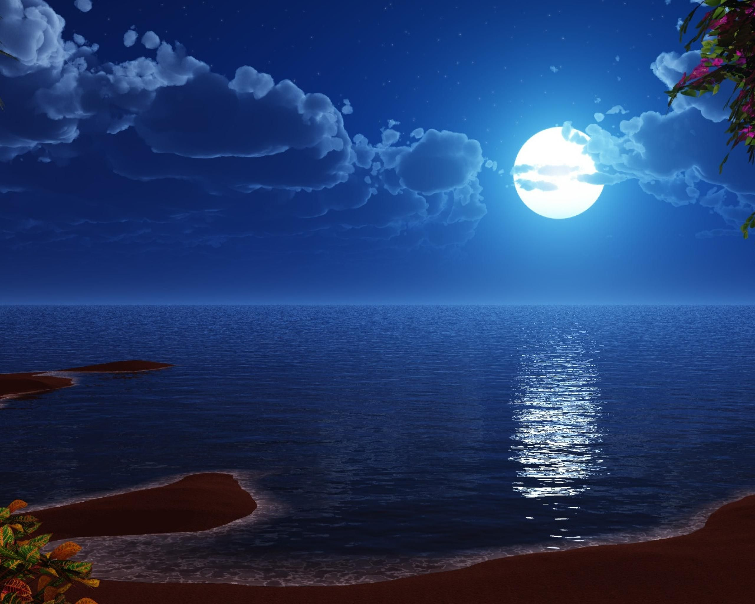 Blue Moon Wallpaper Wallpaper Wide Hd Ocean At Night Beach At Night Nature Wallpaper