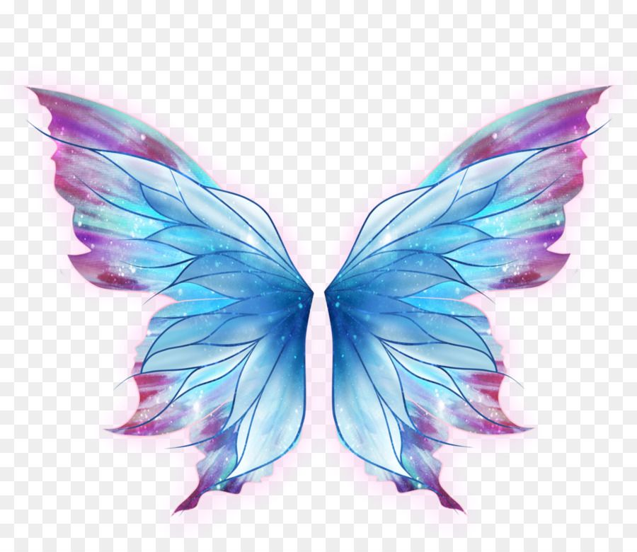 Image Result For Fairy Wings Butterfly Wings Art Butterfly Drawing Wings Art