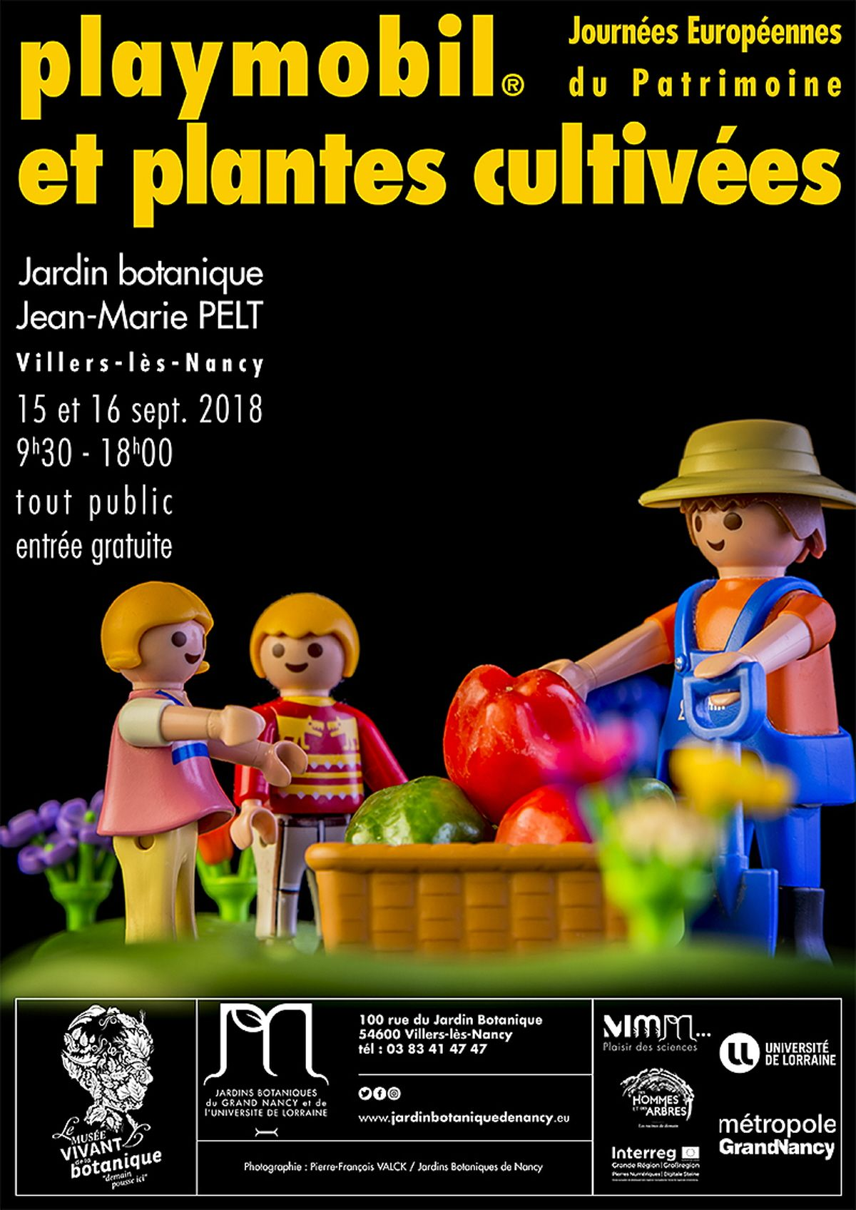 Pin by JL Matterer on Expositions Playmobil | Pinterest | Playmobil