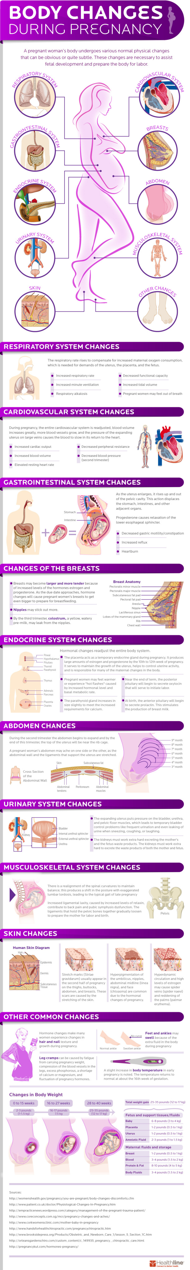 Body Changes During Pregnancy [INFOGRAPHIC] | New Visions Healthcare Blog