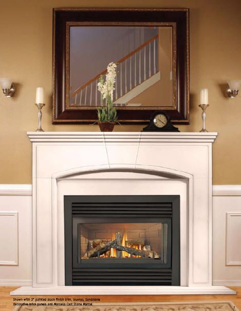 Napoleon Fireplace Gd33nr Gd34nt Direct Vent Gas Fireplace Insert