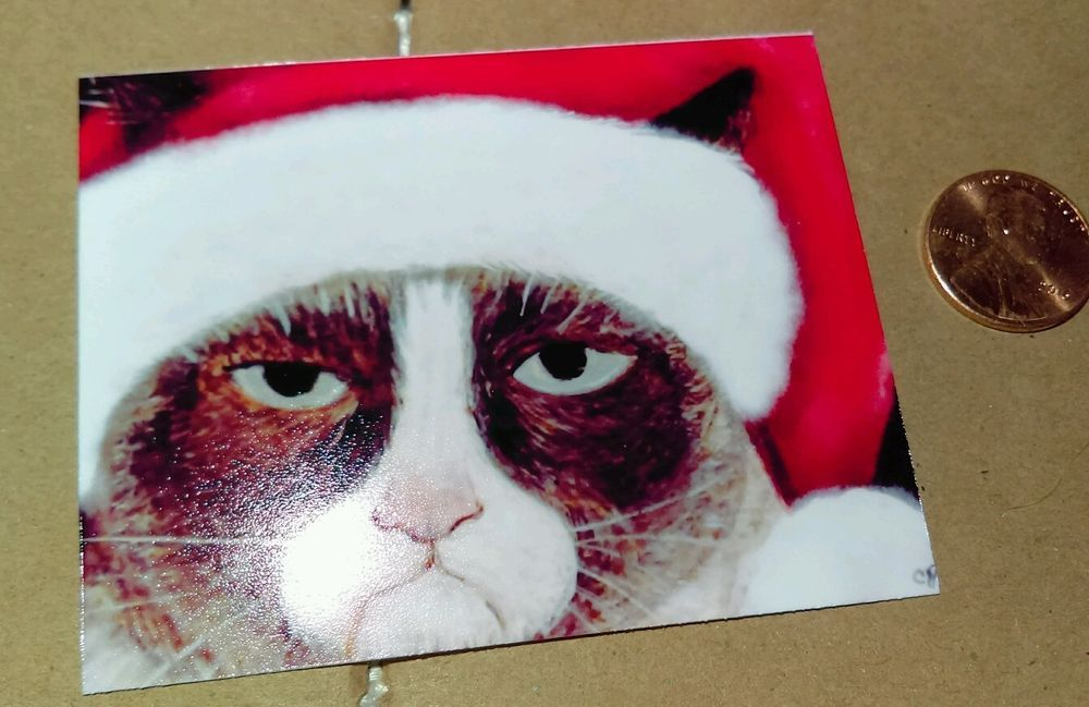 ACEO Art Card Grumpy Cat Santa Hat Signed ATC Christmas. Card # 1 ...