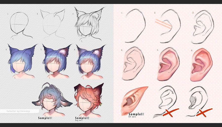 human_vs_beast_ears_by_kawacy-da68cr7.jpg (900×517)