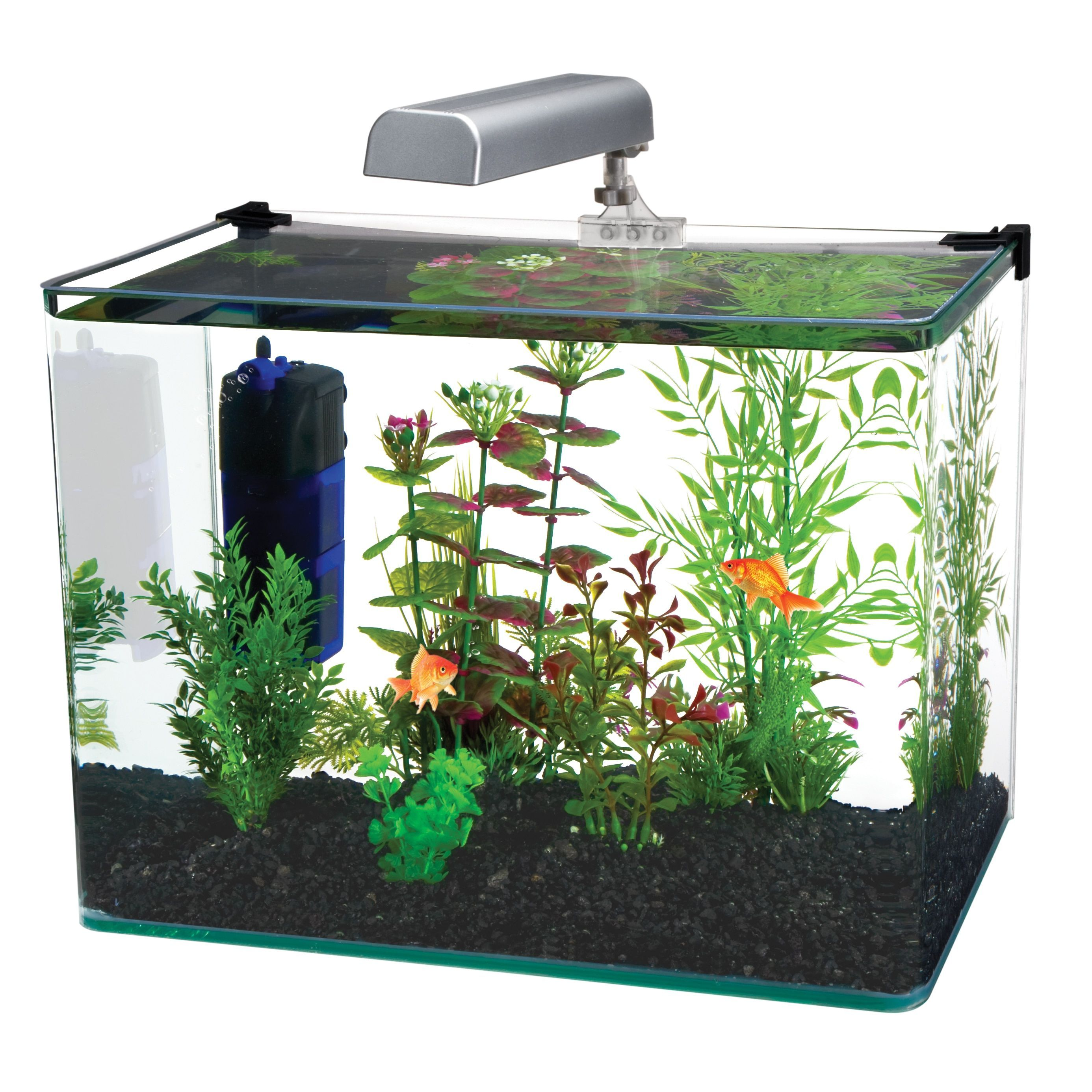Fluval Spec III Aquarium Kit 2 6 Gallon $56