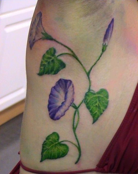 25 Amazing Morning Glory Tattoos For Girls Morning Glory Tattoo Flower Tattoo Designs Flower Tattoos