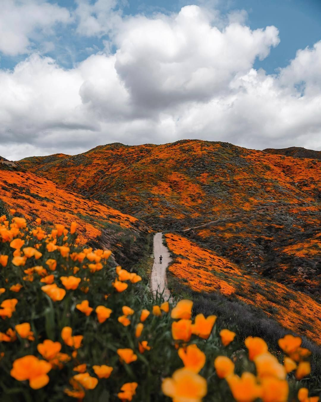 California Nature Landscape And Scenery Photography Blog On Tumblr California Nature California Travel Destinations Travel Aesthetic