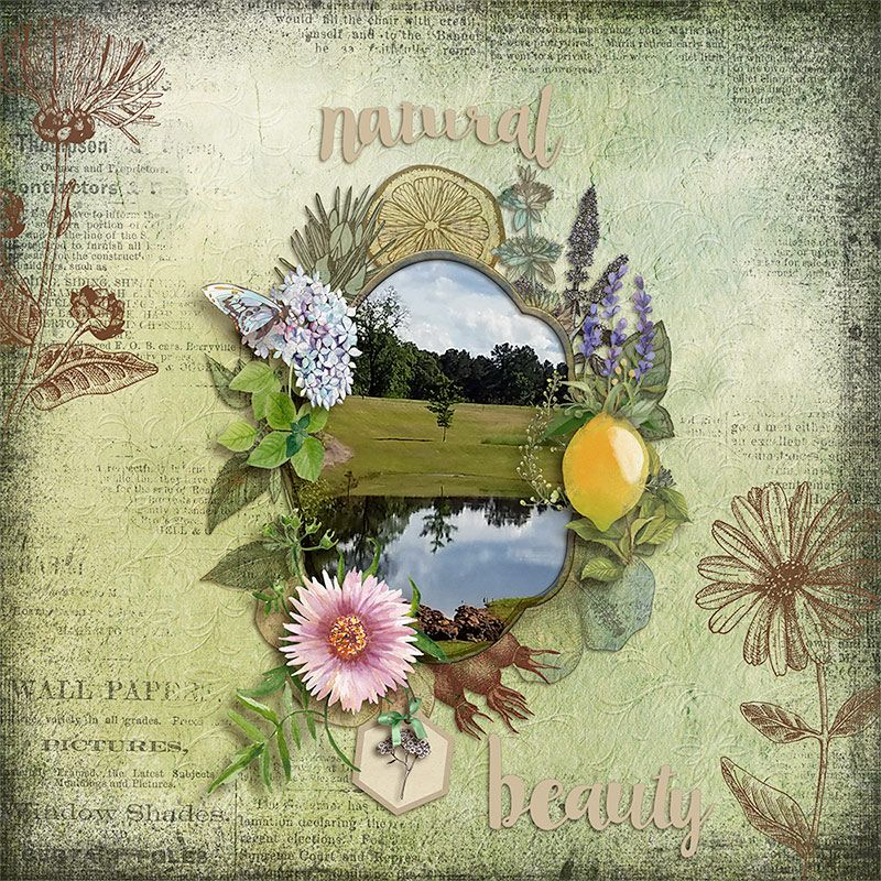 Created with the gorgeous new Natural Bundle by Julie C Designs, found at The Studio https://www.digitalscrapbookingstudio.com/personal-use/bundled-deals/natural-bundle/