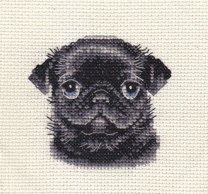 Details About Black Pug Dog Puppy Full Counted Cross Stitch Kit