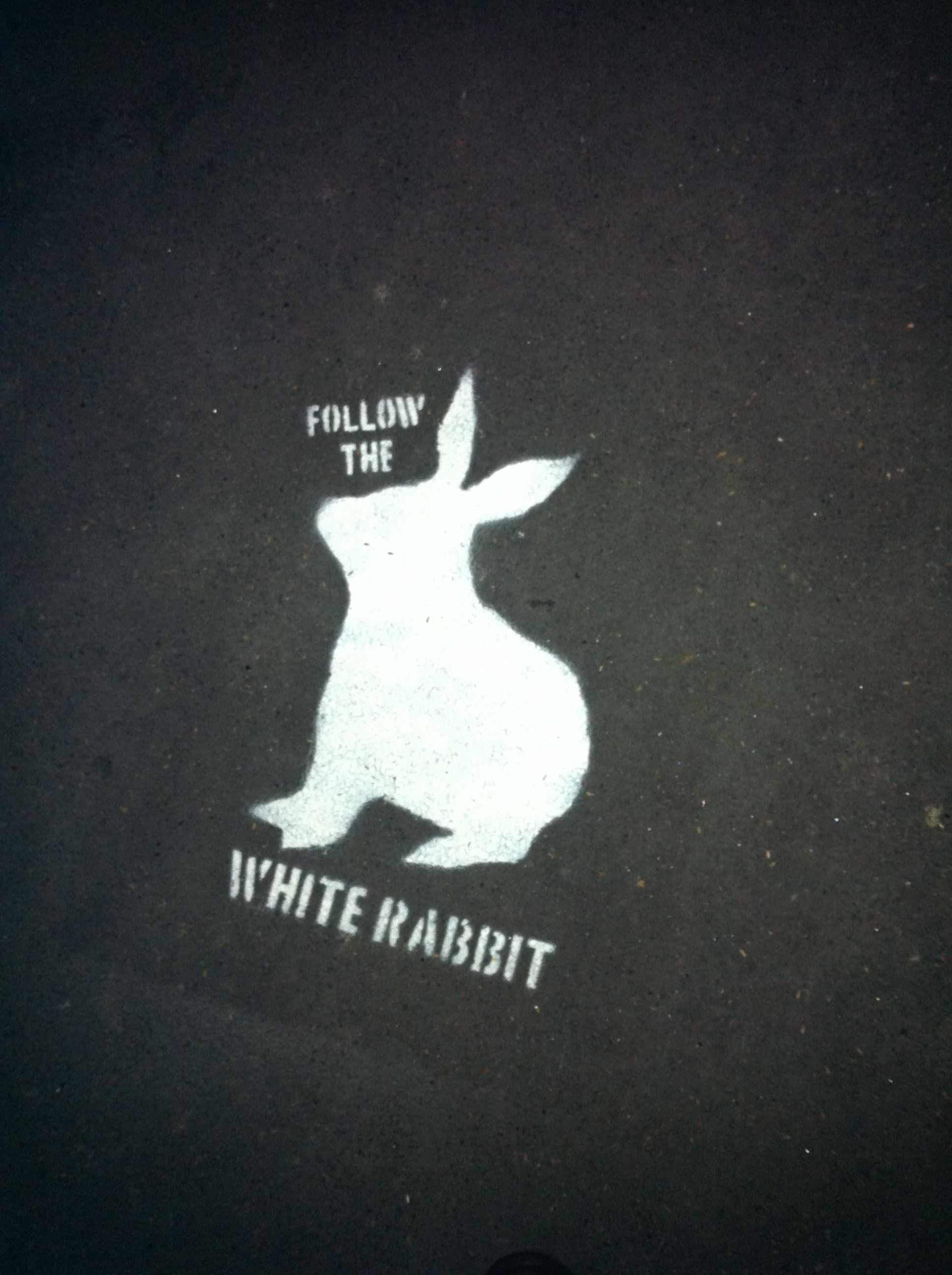 Alice S Wonderland Ch 1 Down The Rabbit Hole Follow The White