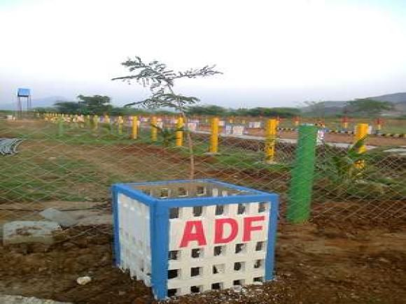 15 Ada Agricultural Land For Sale