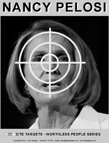 Image result for pelosi shooting target
