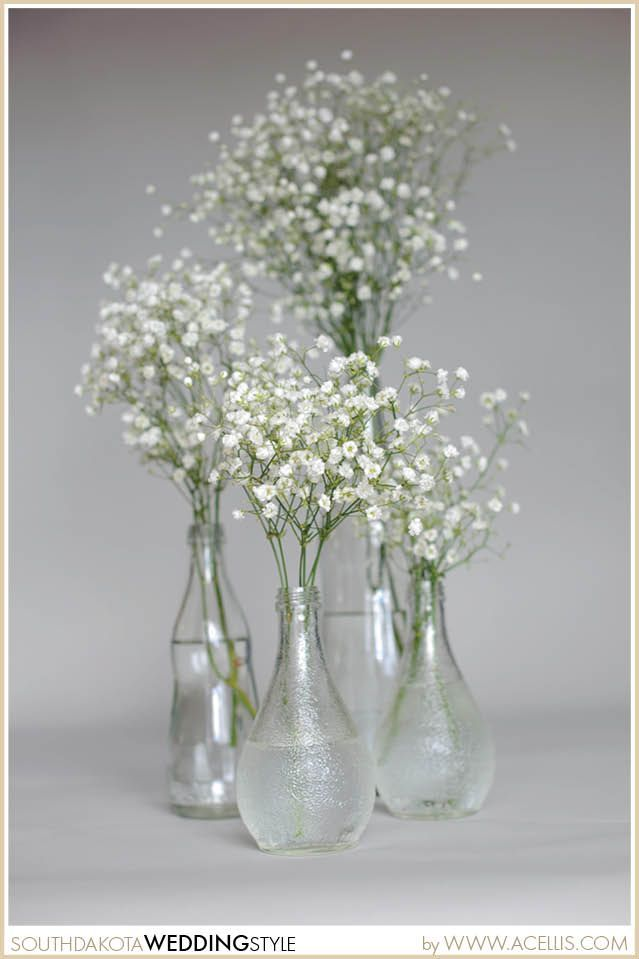 White Baby Breath In A Vase For A Vintage Wedding Sd