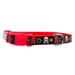 Top Paw Skull Adjustable Small Dog Collar Collars Petsmart Small Dog Collar Small Dogs Petsmart