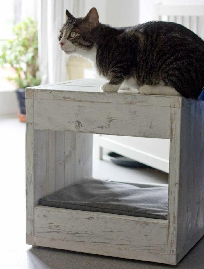 Part side table, part pet bed - the Bloq by Blinq - space saving ideas for pet #pets #cats #dogs #home #design #interiors