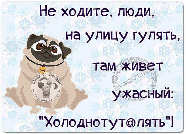 Слова со смысломЮмор Статусы ЦитатыЗима Юмор