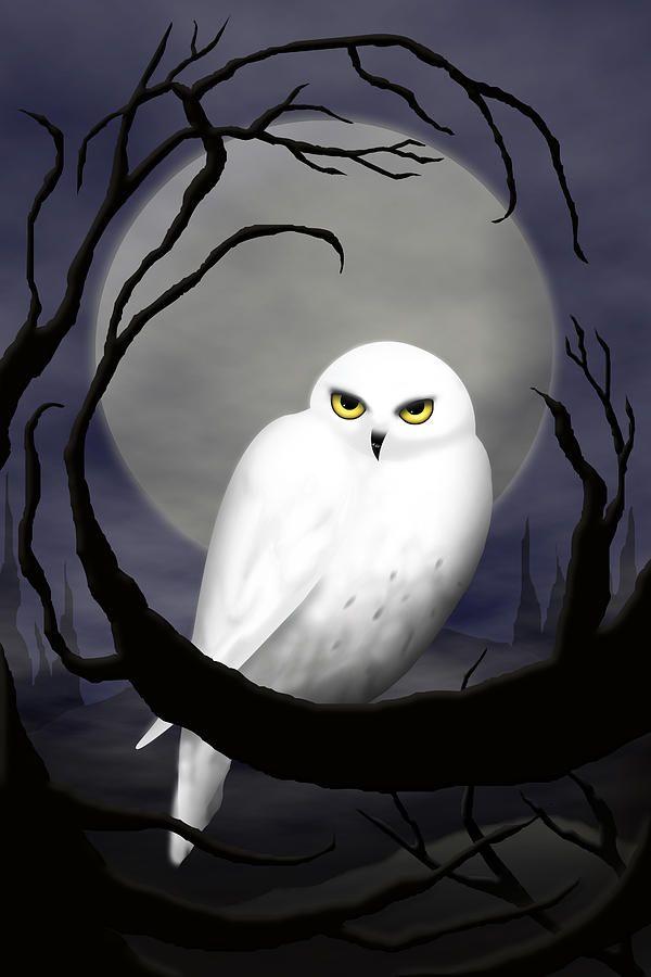 Snowy Owl Canvas Print / Canvas Art by Daneen Rush Craft-Art