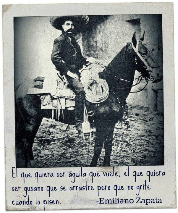 Emiliano Zapata Quotes Simple Emiliano Zapata  My Favorites Quotes & Sayings  Pinterest