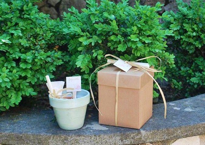 Bomboniera ecologica con vasetto con bulbo