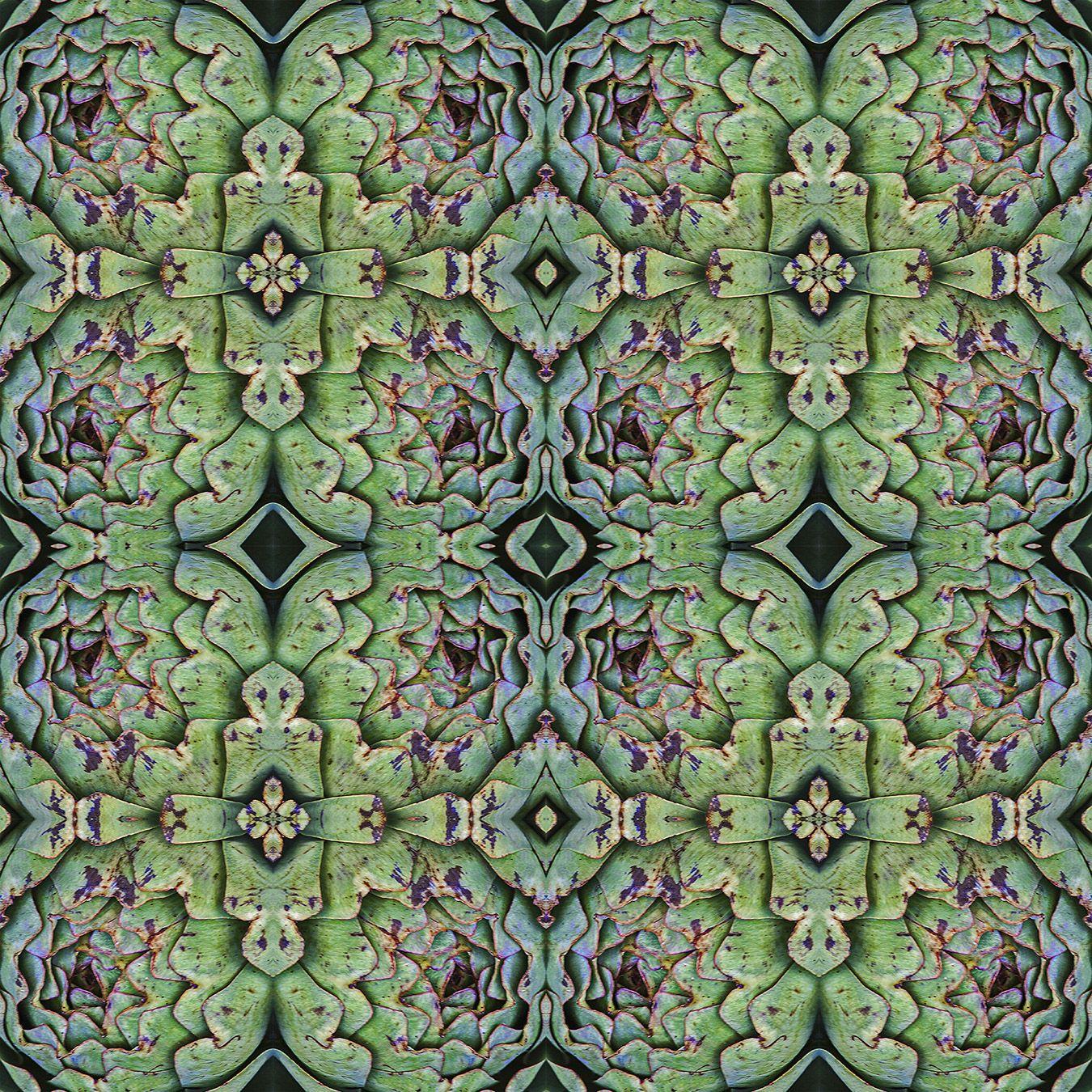 #Symmetrie und #Wiederholung führt zu diesem #Muster ausgehend von einer #Mammole also einer #grossen #Artischocke