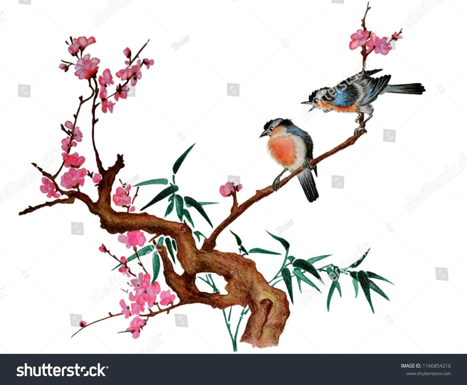 Watercolor Traditional Chinese Painting Of Flowers Cherry