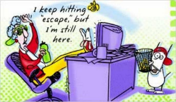 Maxine Cartoon Retirement Quotes Funny Stories