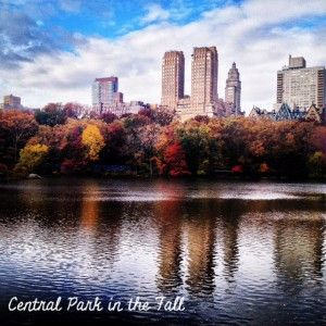 Central Park in the Fall.  Perfect time to visit NYC!