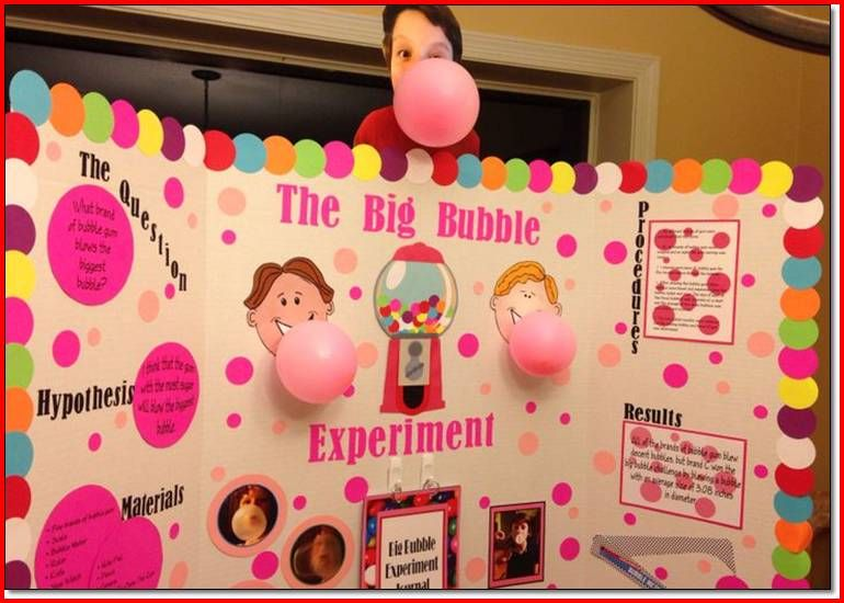 Design Idea For Orbeez   5Th Grade Science Fair Projects ...