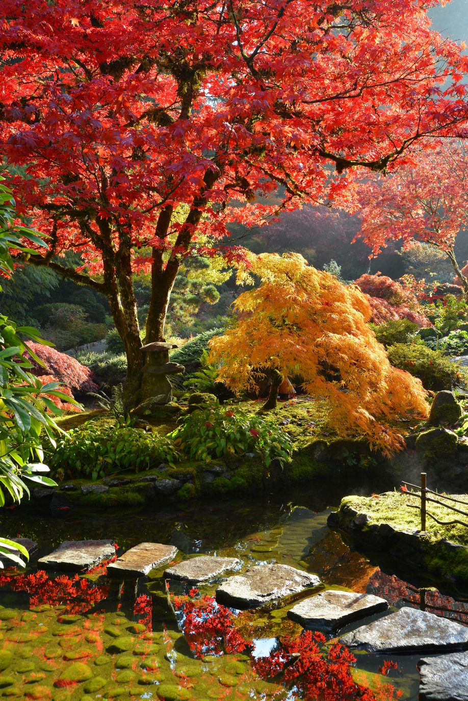 Japan Fall Colors Wallpaper The Butchart Gardens Japanese Garden One Day I Would