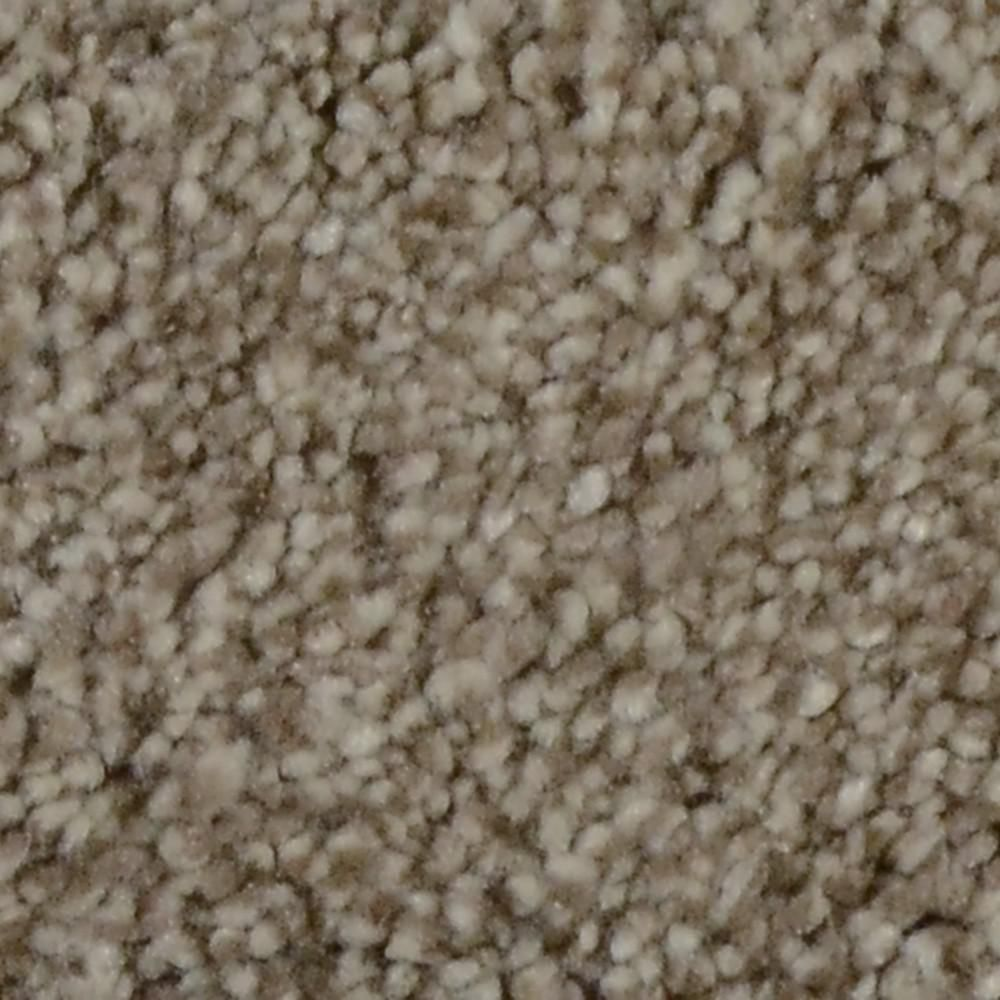 Autumn Charm Color Maplecrest Texture 12 Ft Carpet 1080 Sq Ft Roll Carpet Samples Textured Carpet Carpet