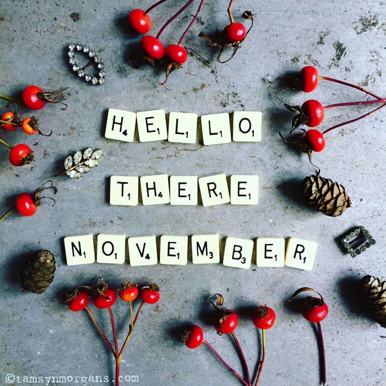 Tamsyn Morgans | Hello November!