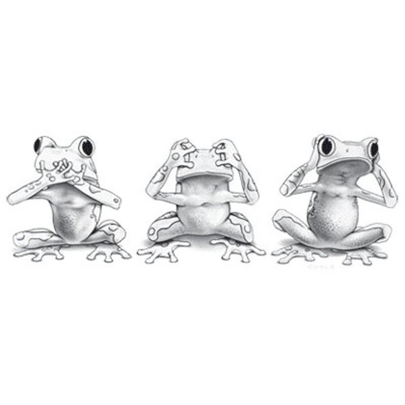 Solar Trans Color Changing Transfer Black White Changes To Etsy In 2020 Frog Drawing Cute Frogs Frog Illustration